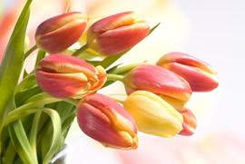 Кто вручает цветы на дне рождения